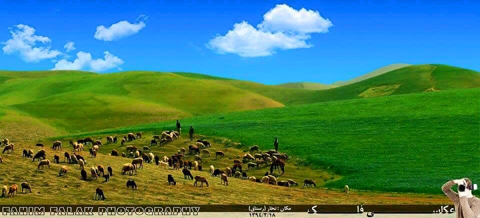 """Didn't I tell you, Don't run away from me! Didn't I tell you, In this empty fantasy, Even if for centuries, you wander angrily You'll never find another true companion like me"" ~Rumi ❤️ Photo: Takhar, Afghanistan"