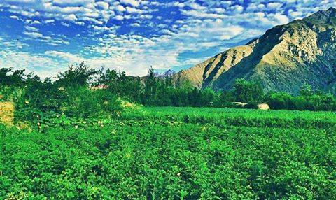 This is love: to fly toward a secret sky, to cause a hundred veils to fall each moment. First to let go of life. Finally, to take a step without feet. ~Rumi❤️  Photo: Panjshir, Afghanistan