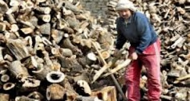 Firewood prices soaring in Kabul