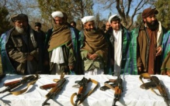 Vocational training courses to militants who joined peace