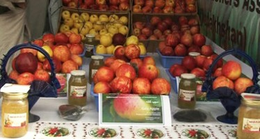 Kandahar Fruit Exporters Face Problems from Pakistan Amid Fruit Harvests