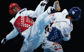 Afghanistan cannot attend 2013 World Taekwondo Championship due to visa issues