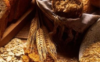 Afghanistan's first ever Strategic Grain Reserve inaugurated