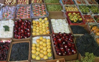 10% increase in Afghanistan's vegetable and fruit exports