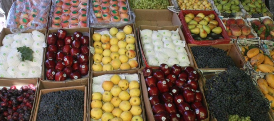 European Union funds fruit quality center in Balkh province