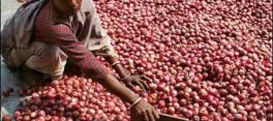 1,000 tons of onion exported to India from Afghanistan daily