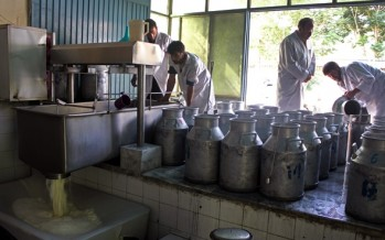 MIGA to fund Kabul Dairy Processing Plant
