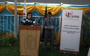 Afghanistan Carpet Center of Excellence to be established