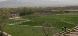 Agriculture as a Growth Industry in Afghanistan: Challenges and Possibilities