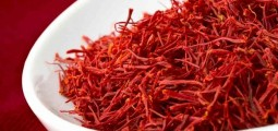 Saffron growing satisfactorily in Takhar