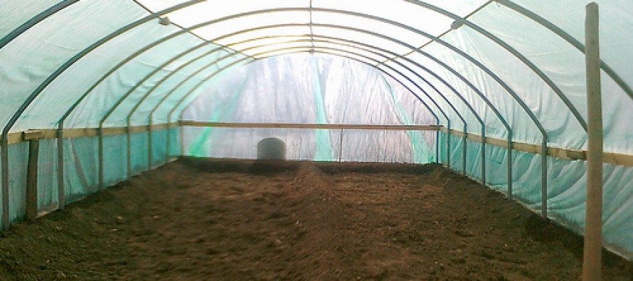Greenhouses built for women in eastern Afghanistan