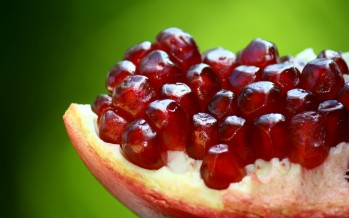 Afghanistan exports 40,000 tons of pomegranates worth USD 10mn