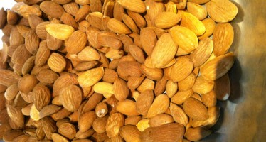 Almond production quadruples in Samangan, prices edge down