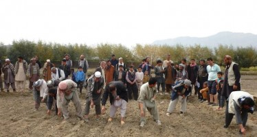 Afghan farmers receive training on modern farming techniques