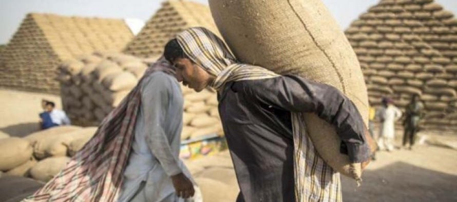 Pakistan wants to regain market for its flour in Afghanistan