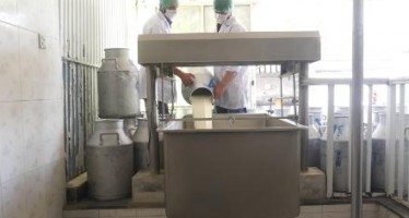 Milk processing complex worth $12mn to be built in Kabul