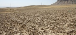 Australia Provides AUD 5mn To Help Drought Affected People in Afghanistan