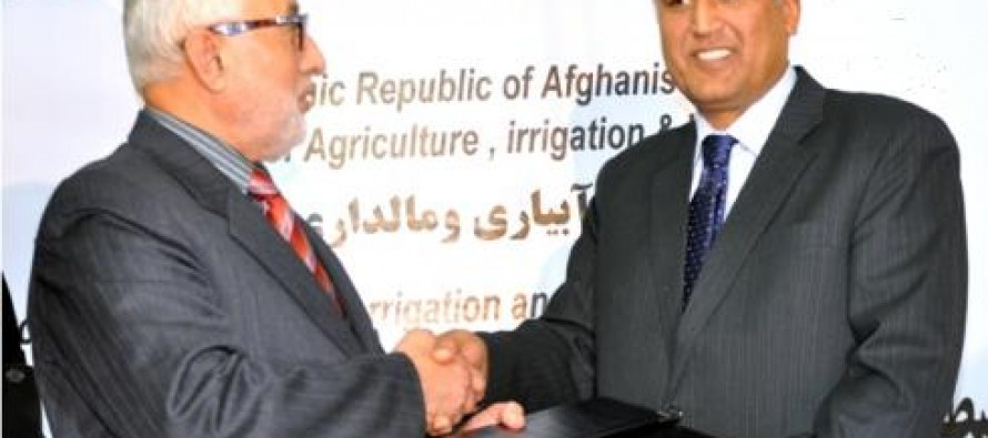 Kabul to witness 300 agriculture projects