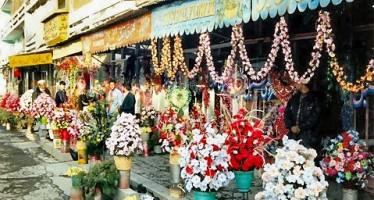 Kabul celebrates Valentine's Day