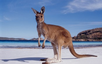 Australia: Where the good life comes at a price