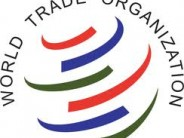 WTO To Be Led By A Woman For The First Time In 25 Years