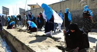 Afghan women participate in the tree planting campaign