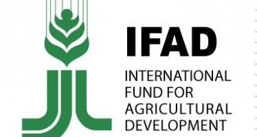 IFAD pledges funds to improve food security in Afghanistan