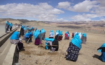 Bamyan women participate in tree planting campaign