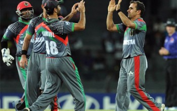 Afghan cricket team to provide technical assistance to Tajik cricket team