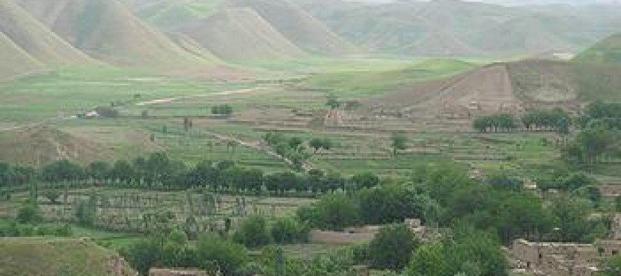 Afghan government to rehabilitate pistachio forests in Badghis province