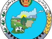 Government Approves 225mn Afghanis Worth of Agricultural Loans