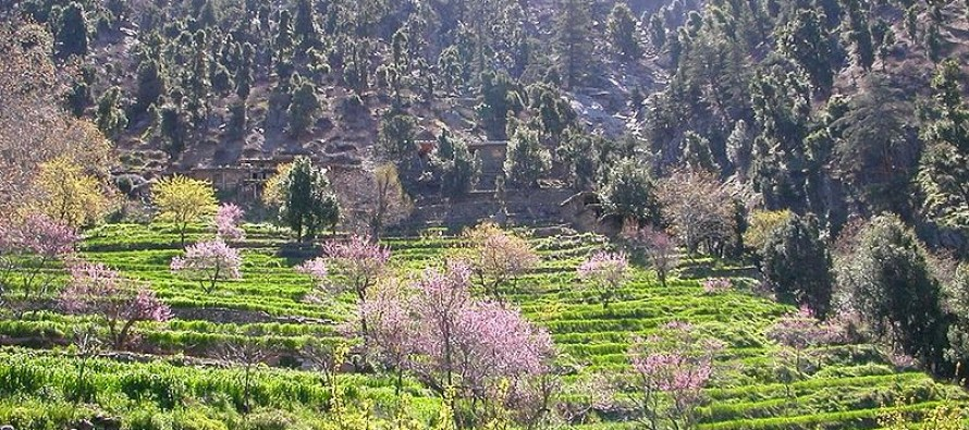 Uplift projects to be executed in Kunar province