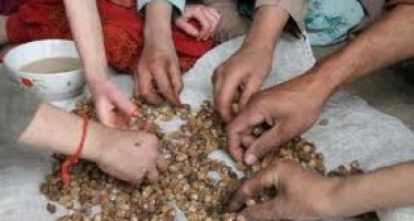 60% of children in Afghanistan to face malnutrition