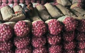 Afghanistan exports more than 6000 tons of potatoes and onions this year