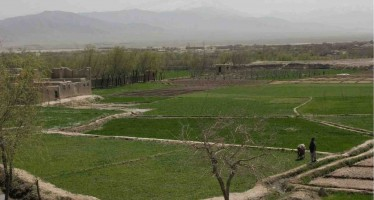 Donor community pledges to support Afghanistan's agriculture sector