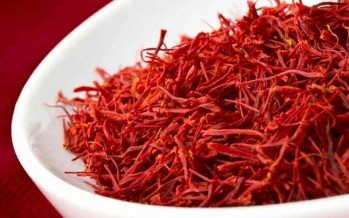 Students from Harvard Business School sell Afghan saffron