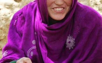 Dried Apricots Build Income for Afghan Women