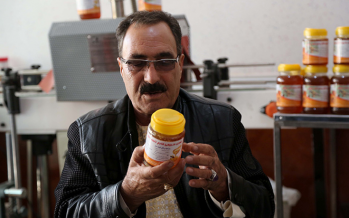 The taste of Afghan honey proves irresistible