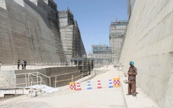 Salma Dam to be built in one year: Governor Rahimi
