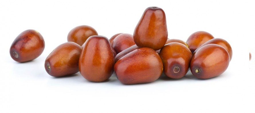 Jujube price doubles in Farah province