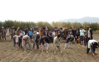 Afghan farmers receive training on modern farming techniques
