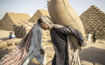 Pakistan wants to regain market for its flour in Afghanistan