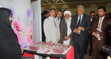 Saffron cultivated lands in Afghanistan up by 800 hectares this year
