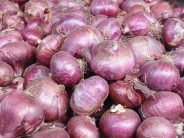 New Cold Storages in Laghman Boost Onion Cultivation by 10%