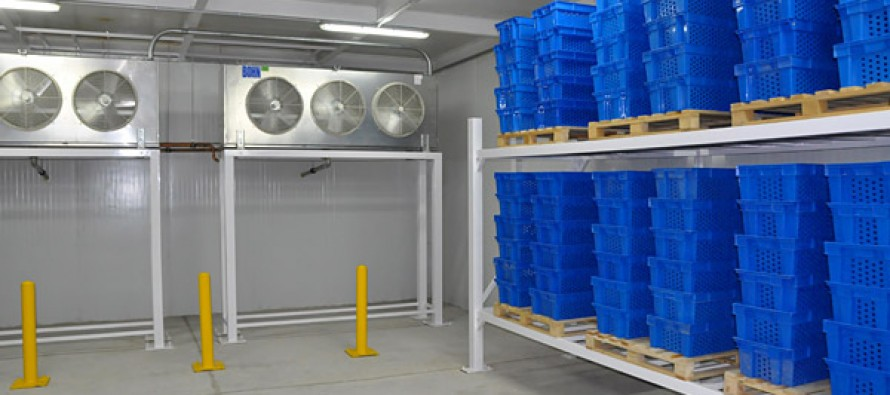 Afghan government to build 248 cold storage facilities