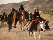 Nomad Sedentarisation One of the Growing  Sources of Conflict in Afghanistan: AREU Study Finds