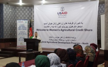 Improving livelihoods for Afghan Women through agricultural credit