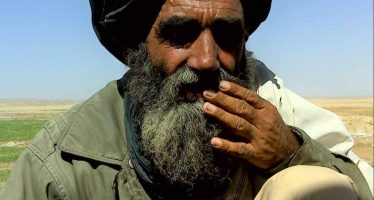 Helmand Food Zone: Illusion of Success-Research Paper By AREU