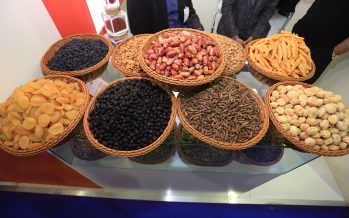 Afghan Exporters Showcase Afghanistan's Finest Products at GulFood Expo Dubai