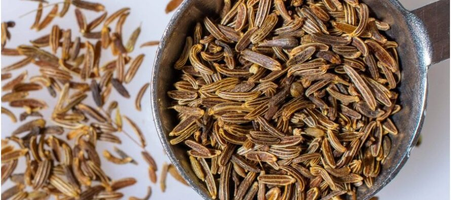 Herat Exports $16 Million Worth of Cumin Worldwide